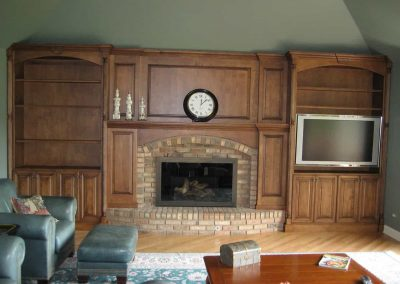 Euro Tech Fireplace 12